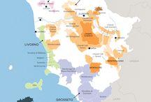 Italian wines / By regions