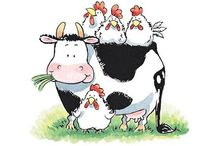 Penny Black, vaca
