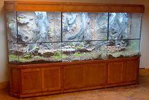 Reptile Enclosures / Reptile Enclosures designed with Nature in Mind