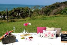 Romantic Picnic Themes / Romantic Picnics offers a variety of theme-based packages. You can choose to indulge into Romance, be surrounded by a Beach feeling or find yourself in a romantic Vintage setting. All picnic themes can be set up at the location of your choice.