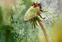 Kukka-akvarelleja