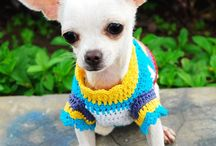 CROCHET FOR PETS / by Susan Wright