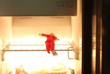 Elf on the Shelf Humor