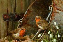 Ptaki w malarstwie / Birds, watercolour, art,