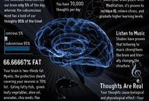Psychology/Brain