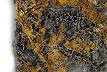 licheni