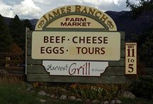 Durango Colorado trip