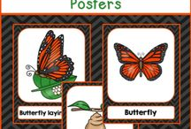 Spring Theme Activities / All things spring and spring holidays - from classroom decor to activities to clipart and everything in between! Check here for spring classroom activities, easter ideas, flowers, insects, and all things sunny plus so  much more!