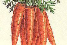 Veggie draw