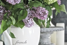 Shades of White / by French Country Cottage
