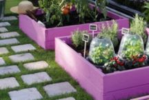Square foot gardening ideas