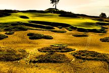 US Open Golf 2015 / Major golf championship played at Chambers Bay, Washington in the US. #Golf #Major