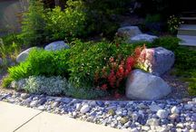 Rockscaping Ideas