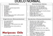 Mariposas Chile / Duelo por muerte de hijos
