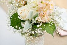 Jer wedding flowers / by Ariana Pederson