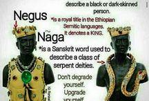 Real Naga