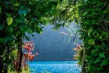 Perfect refuge in nature