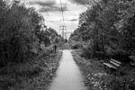 Black & White Outdoor