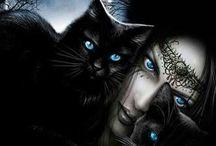 Gatos negros magicos
