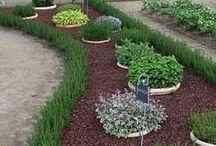 Gartenbepflanzung