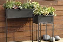 plant steel rack