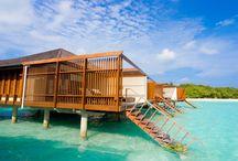 Travel to Maldives / enjoy travel to maldives