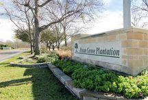 Pecan Grove - Richmond, Texas
