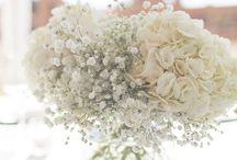 Gipsówka w dekoracjach weselnych / Ślub i wesele z gipsówką