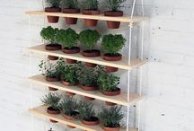 Urban gardening / Ideas