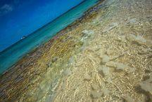 BrianRicePhoto.com: Bahamas pics / Photos by Brian Rice at BrianRicePhoto.com