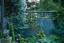 gardening / by michelle