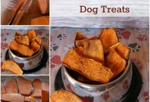 Pet treats, clothes, things & tips / Pet treats, clothing and other helpful items. / by Carrie French