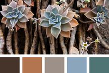 Color Palettes We Love / Color combination inspirations