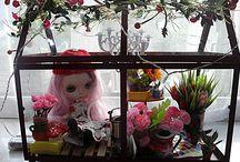 Mary Mas M Blythe Greenhouse / Blythe doll Mary Mas M greenhouse / by Mary Mas M