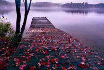 Lake Experience