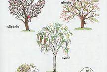 Óvoda-Tavasz
