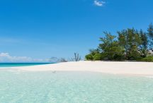 Seychellen / Ontdek de Seychellen! Vanuit een heerlijke accommodatie genieten van het strand, of toch ook wat van het binnenland zien, of misschien meerdere eilanden met elkaar combineren?