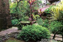BMS Bali garden Ideas