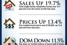 Area Market Infographics