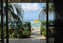 Villas / Villas of distinction for the discerning traveler. Immerse yourself in luxury and comfort. These villas reflect Bonaire's best accommodations. Check out www.bonairecaribbean.com for details.