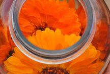 ziołowy DIY - herbal DIY