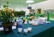 """Green time!!! / Laboratori e creatività a tema """"green"""""""