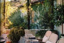backyard / by Tammy McCutchen