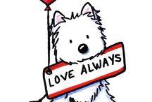 Westies / West Highland Terriers