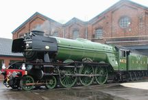 Steaming Beauty / Steam Trains