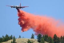 Western Montana wildfires / by Missoulian