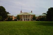 Wake Forest University / University