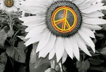 "Happy Hippie / ""If we all had a bong, we'd all get along"""