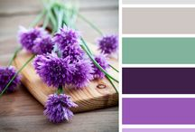 Wedding Colors / Color Pallets for the perfect, custom wedding. Having a color pallet laid out helps to keep everything in order as your planning your perfect wedding.