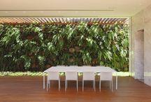 Green wall / Зеленые растения в интерьерах